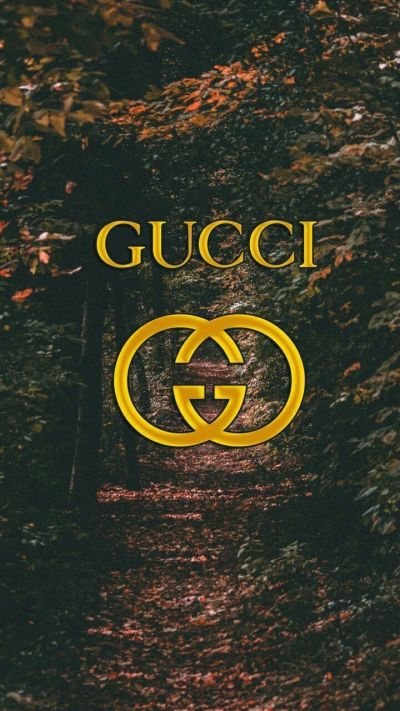 Supreme Gucci Wallpapers - Top Free Supreme Gucci Backgrounds - WallpaperAccess