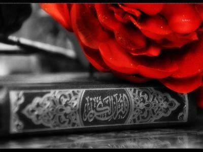 Holy Quran Wallpapers - Wallpaper Cave