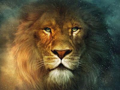 Lion Wallpapers Desktop - Wallpaper Cave