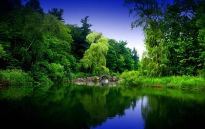Zen Garden Wallpapers - Wallpaper Cave