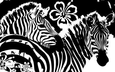 Zebra Backgrounds - Wallpaper Cave