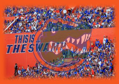 Florida Gators Football Wallpapers - Wallpaper Cave