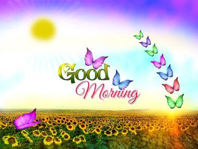 Good Morning Wallpapers HD - Wallpaper Cave