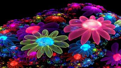 Neon Flowers Cool Wallpaper Wallpaper   WallpaperLepi