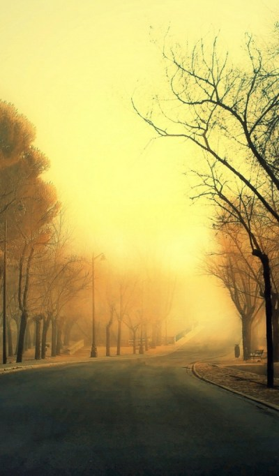 600x1024 Autumn Road Galaxy tab 2 wallpaper