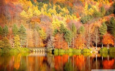 Beautiful Lake Reflection, Autumn 4K HD Desktop Wallpaper for 4K Ultra HD TV • Dual Monitor ...