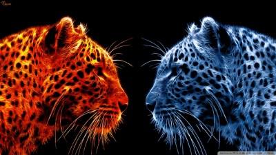 Fire Leopard vs Ice Leopard 4K HD Desktop Wallpaper for 4K Ultra HD TV • Wide & Ultra Widescreen ...