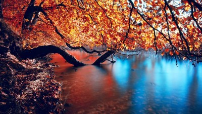 HD Autumn Wallpapers ·①