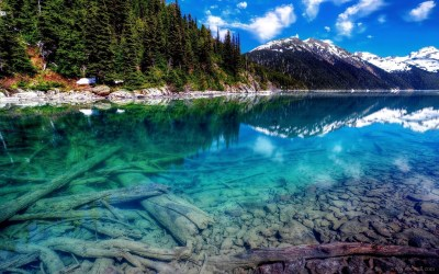 63+ 4K Nature wallpapers ·① Download free HD backgrounds for desktop and mobile devices in any ...