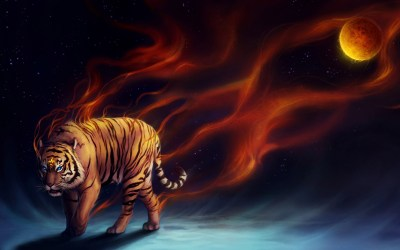 Cool Tiger Wallpapers ·①