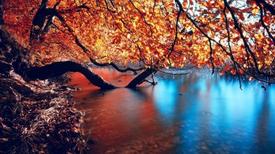 Fall wallpaper HD ·① Download free wallpapers for desktop, mobile, laptop in any resolution ...