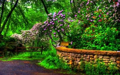Beautiful Spring Wallpaper ·① WallpaperTag