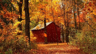 34+ Autumn wallpapers ·① Download free stunning wallpapers for desktop, mobile, laptop in any ...