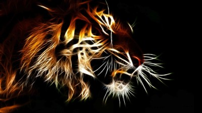 Cool Tiger Backgrounds ·① WallpaperTag