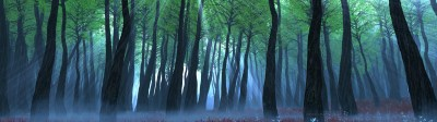 Dual Screen wallpaper 3840x1080 ·① Download free wallpapers for desktop computers and ...