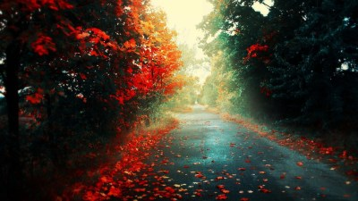 simple Background, Simple, Road, Trees, Landscape, Nature Wallpapers HD / Desktop and Mobile ...