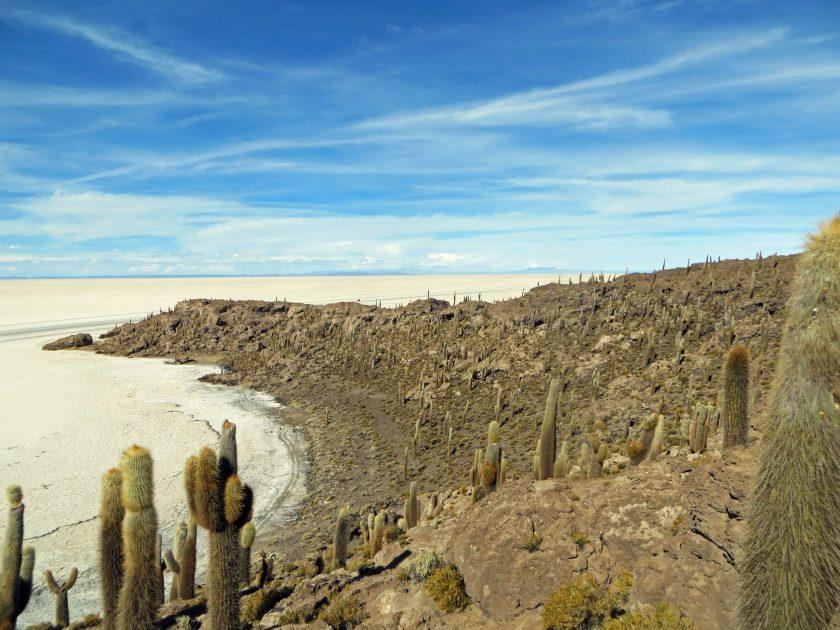 Incahuasi island Salar de Uyuni