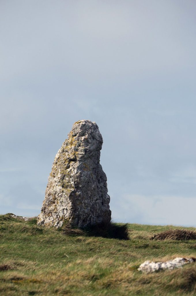 Limestone on the Great Orme North Wales