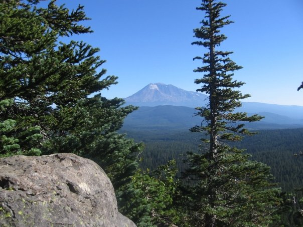 Mt. Adams from Indian Heaven