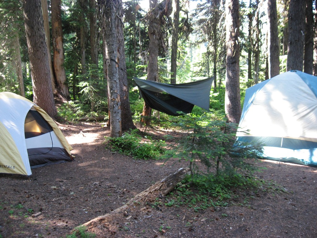 First trip camp site under the trees.
