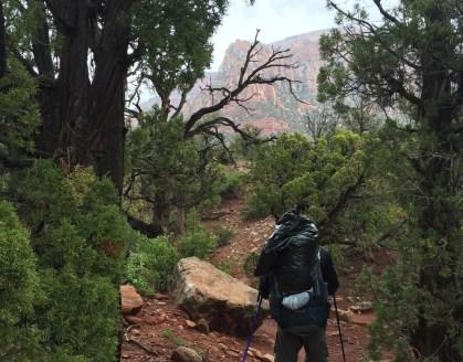 La Verkin Creek trail