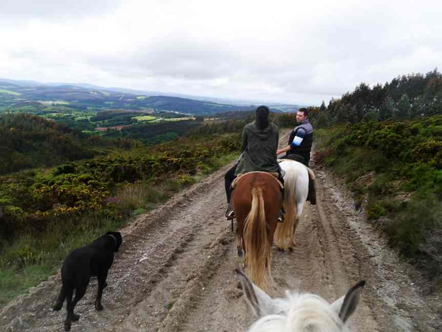 horseback7