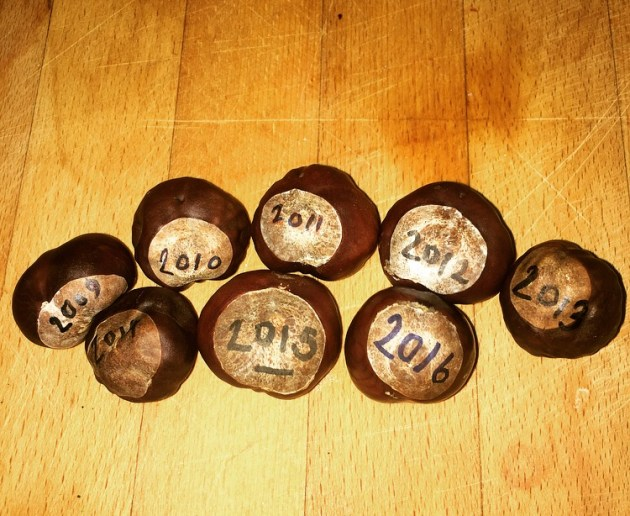 Wansteadium's collections of conkers - all from Christ Church Green, one from each year that this site has been running