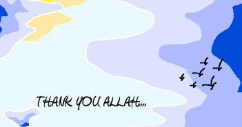 4ed88-thankyouallah