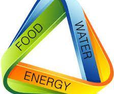 Food energy waters
