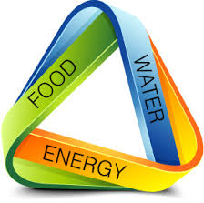 Food energy waters