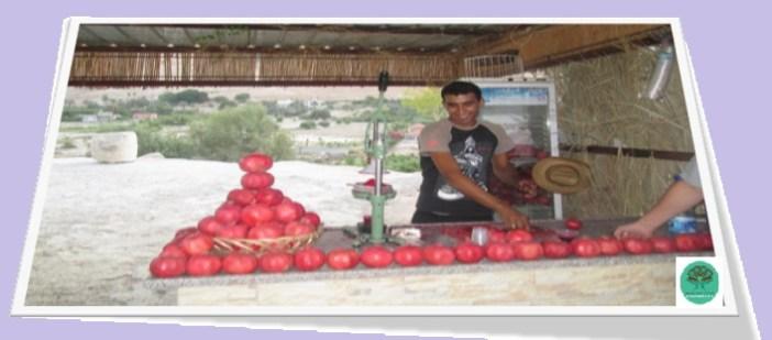 Sufi Dining 3