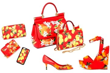 WTFSG_dolce-gabbana-lunar-new-year-carretto-print