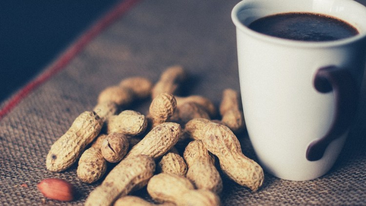 Warum es ein Fehler ist, unseren Kindern keine Erdnüsse zu geben