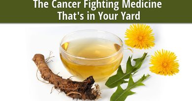 Dandelion, the Cancer Fighting Medicine That's in Your Yard
