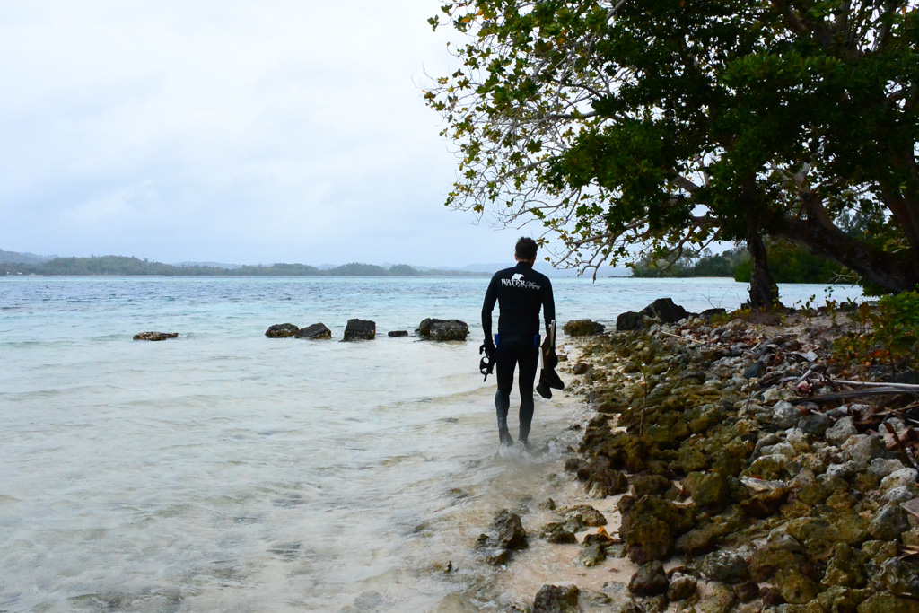 Freediving tropical holidays and tours