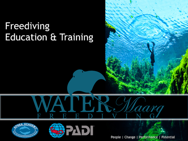 Freediving seminars and training in Melbourne with WaterMaarq