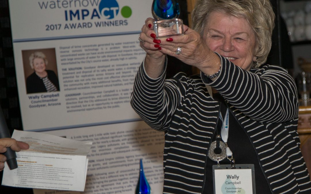 2018 WaterNow Alliance Impact Award – Nominations Open!