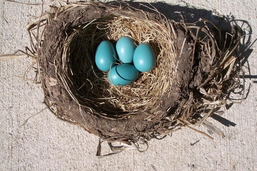 egg-314365_1280