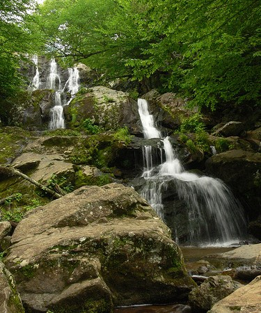 The 3 Easiest Waterfall Hikes in Shenandoah National Park