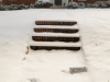 snow-wendell-7661