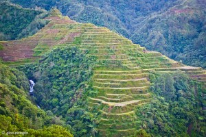 Banaue Rice Terraces / Photo by Gino Mempin