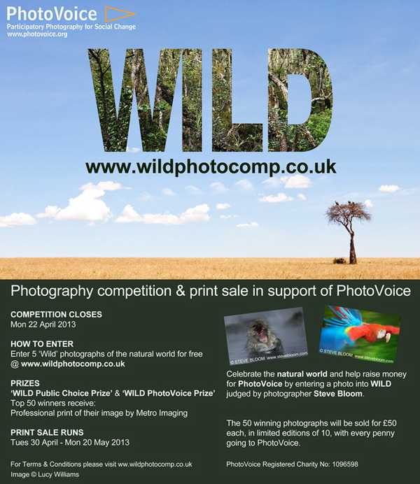 wild photo competition