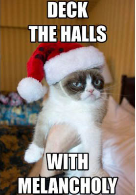 best-funniest-grumpy-cat-8