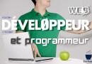Programmeur et développeur web des métiers de grande importance