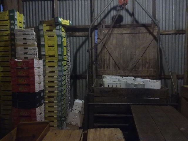 our organic audit checked packing and sorting equipment