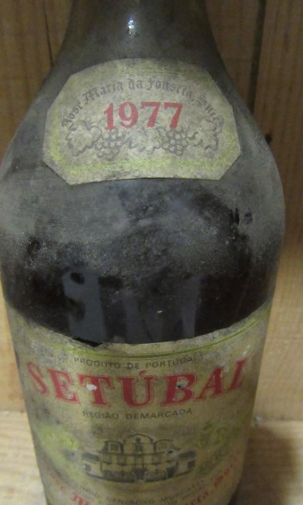 Moscatel Setubal JMF 1977 _2