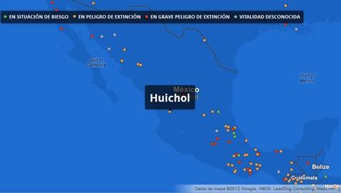 google lenguas peligro extincion mexico Google se suma a la conservación de las lenguas indígenas en peligro de extinción