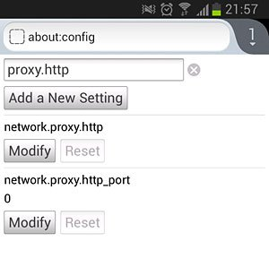 Firefox Browser Proxy Settings