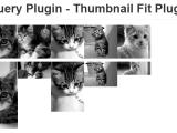 ThumbnailFitPlugin