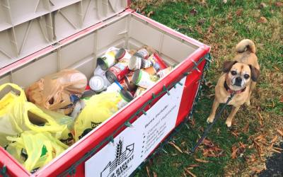 Lilly wanted to show you our donation box